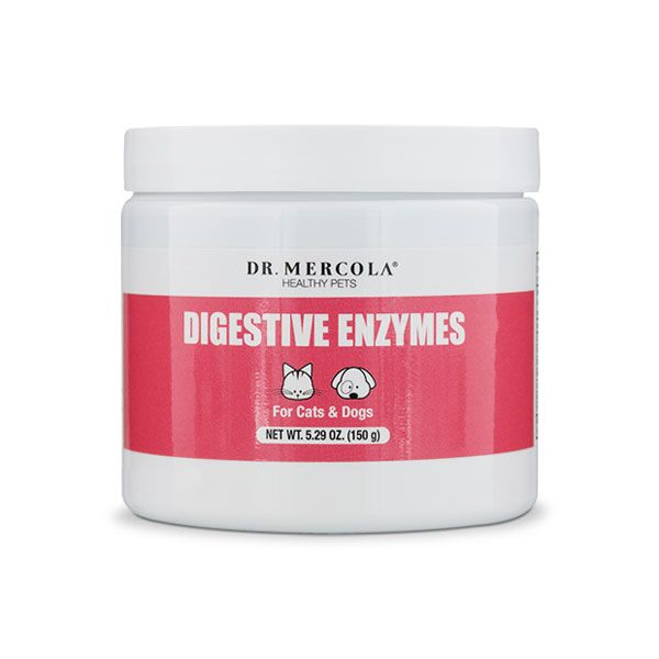 Mercola Pets: Digestive Enzymes